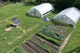 McHenry County College adds solar array to power tunnel used to grow crops year-round
