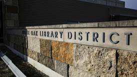 Will County library systems receive over $500,000 in state grants