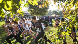 Gris cross country: Rock Falls runs to regional title on home course