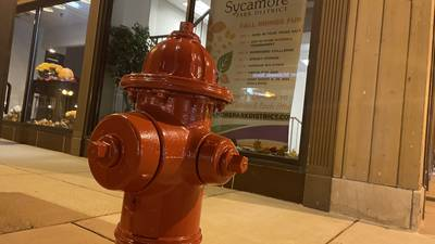 Check reimbursement for residents' lead service replacement gets greenlight by Sycamore council