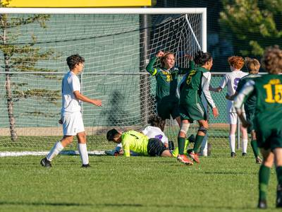 Boys soccer: Crystal Lake South beats Wauconda for fourth straight regional title