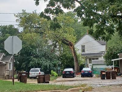 Severe thunderstorm watch in place for parts of Northern Illinois, National Weather Service says