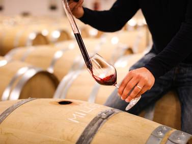 Uncorked: Sicilian vintners raising the bar on sustainability