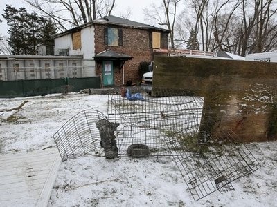Woodridge man found guilty of animal cruelty in connection with kennel fire