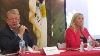 GOP state senators seek curb on governor's power