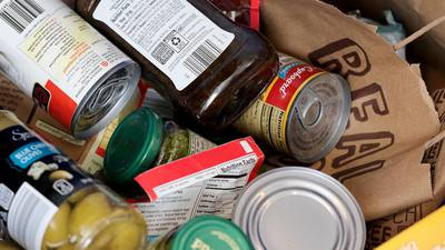 Putnam County Brownie Troop 1037 is collecting food donations