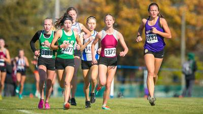 Photos: IHSA Class 2A Cross Country Sectional at Lakes
