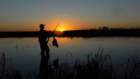 Waterfowl and Upland game hunting applications being accepted