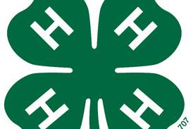 Carroll County 4-H member wins state dairy scholarship