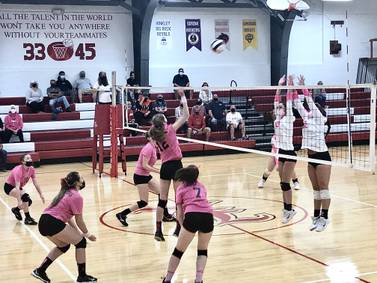 Hall regroups to defeat LaMoille in three sets