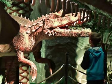 Jurassic Gardens the latest attraction at Volo Auto Museum