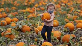 Pumpkin season is here – check out our expansive list of pumpkin farms and festivities