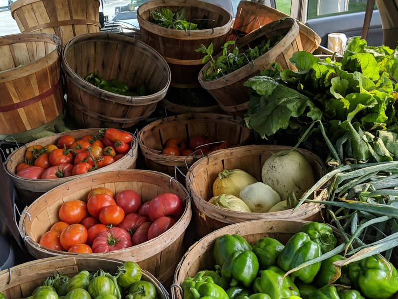Oswegoland Park District's pantry garden yields record produce harvest for food pantry