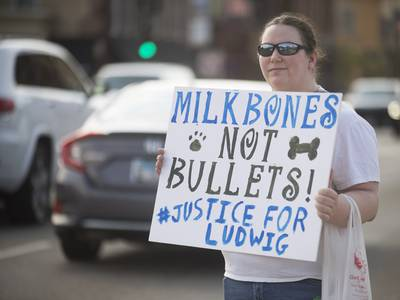 Photos: Rally for Ludwig in St. Charles