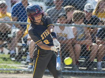 SOFTBALL: 10 area players on all-state lists