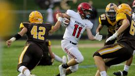 Northwest Herald preview capsules for Week 1