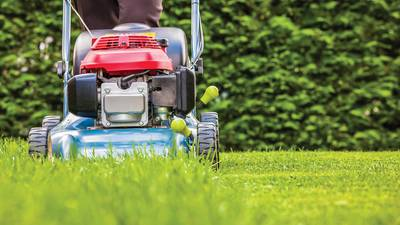 The dangers of mowing too low