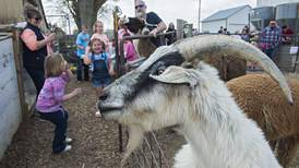 Animal farm: Chadwick family opens its barn doors wide