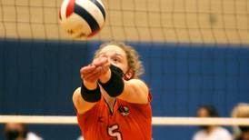Girls Volleyball: Suburban Life girls volleyball preview capsules