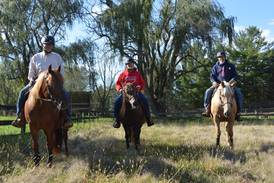Bull Valley nonprofit serving veterans featured in recently released mustang documentary