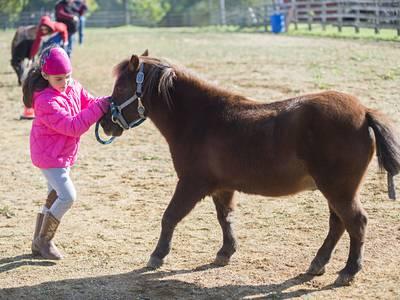 Photos: Horse expo in Oregon