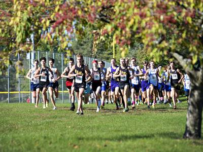 Boys cross country: Newman, Erie-Prophetstown, Rock Falls finish 2-3-4 to advance to sectional