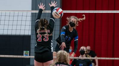 Girls Volleyball: Megan Williams' monster match carries Newark past Earlville to LTC Tournament title