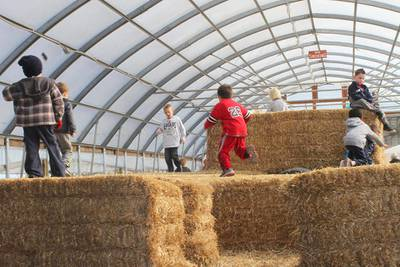 Celebrate the changing of the seasons at a local pumpkin farm