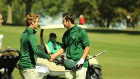 Area roundup: St. Bede, Hall golfers advance to sectionals