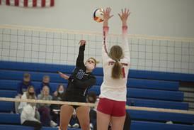 Photos: Newman vs Forreston volleyball