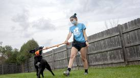 After surge of pandemic adoptions, McHenry County animal shelters are filling with adoptable pets