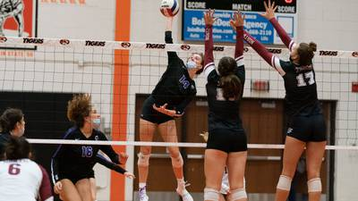 Girls Volleyball: Downers Grove North's experience shows in knocking off Wheaton Warrenville South for third place at Wheaton Classic