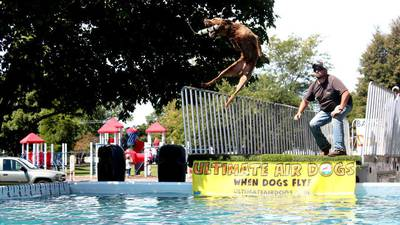 Yorkville Hometown Days festival to launch