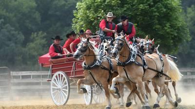 OCN Ogle County Fair photos