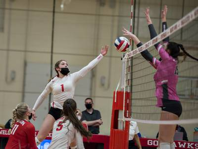 Volleyball: Rock Falls takes control in both sets to roll past Oregon