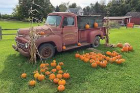 Halloween on the Farm to grace Lyon Farm
