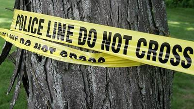 Woodridge police investigate shooting