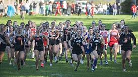 Cross country: Dixon girls, Rock Falls boys run to runner-up finishes at Big Northern Conference Meet