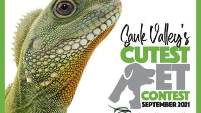 Vote for your favorite September pet