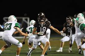 16 Joliet-area teams still in the chase for playoff berths