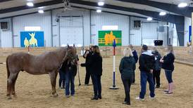 McHenry County College offers leadership workshop with Main Stay Therapeutic Farm