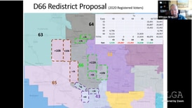 Elected officials, witnesses trade barbs over redistricting at McHenry County hearing
