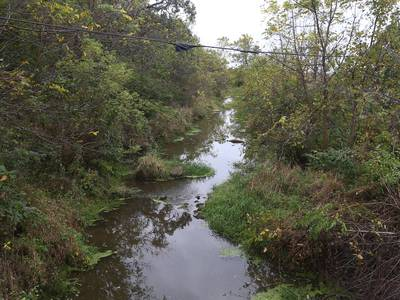 It's official: Bureau County creek will be renamed Adams Creek