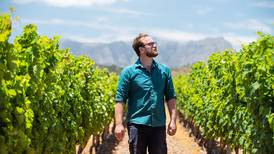 Uncorked: South African winemakers fine-tune pinotage varietal