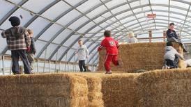 Pumpkin season is here. Read our list of northern Illinois pumpkin farms