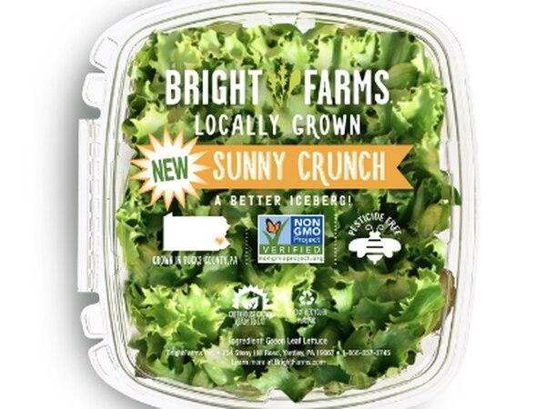 CDC: Lettuce grown in Rochelle linked to salmonella outbreak